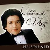 Celebrando la Voz de Nelson Ned de Nelson Ned