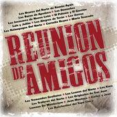 Reunión De Amigos de Various Artists