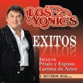 Exitos de Los Yonics