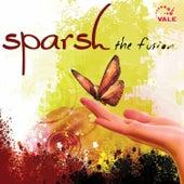 Sparsh the Fusion de DJ John