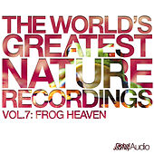 The World's Greatest Nature Recordings, Vol. 7: Frog Heaven - Single by Global Journey