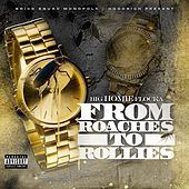 From Roaches to Rollies von Waka Flocka Flame