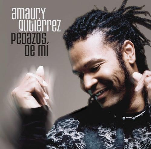 Pedazos De Mi by Amaury Gutierrez