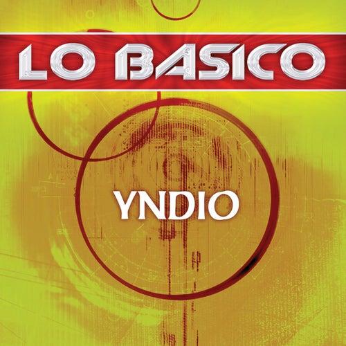 Lo Basico by Yndio