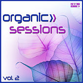Organic Sessions, Vol. 2 by Various Artists
