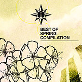 Spring Compilation di Various Artists