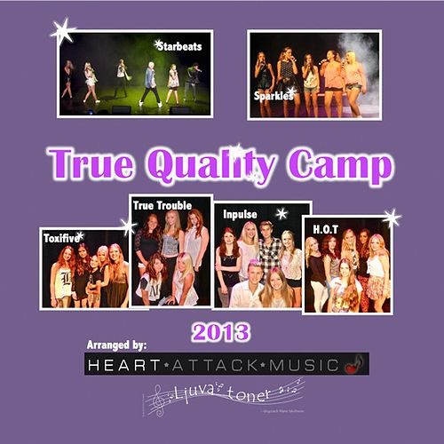 True Quality Camp 2013 - EP by Various Artists
