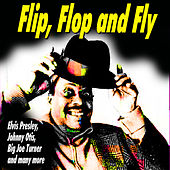Flip, Flop and Fly de Various Artists