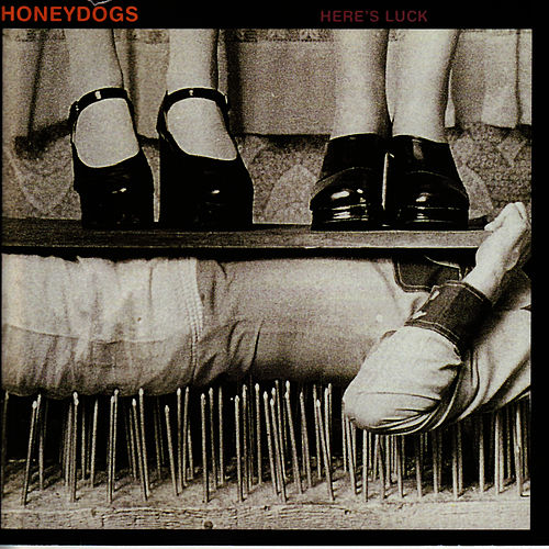 Here's Luck by The Honeydogs