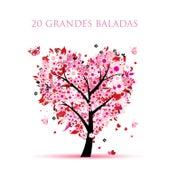 20 Grandes Baladas by Various Artists