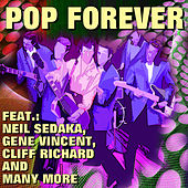Pop Forever de Various Artists