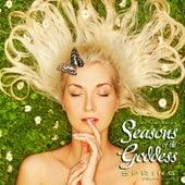 Meritage Healing: Seasons of the Goddess (Spring), Vol. 1 by Various Artists