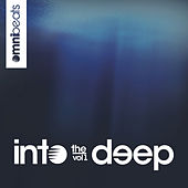 Into The Deep, Vol. 1 by Various Artists