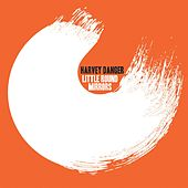 Little Round Mirrors by Harvey Danger