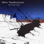 Time Travel Is Lonely by John Vanderslice