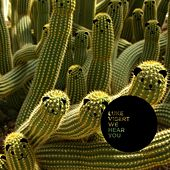 We Hear You by Luke Vibert