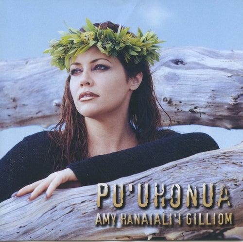 Pu'uhonua by Amy Hanaiali'i Gilliom