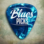 Blues Picks de Various Artists