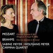 Mozart, Brahms: Clarinet Quintets by Various Artists