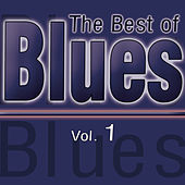 The Best of Blues Vol. 1 de Various Artists