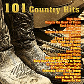 101 Country Hits by Various Artists