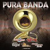 Pura Banda de Various Artists
