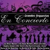 Grandes Orquestas en Concierto de Various Artists