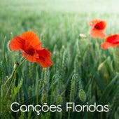 Canções Floridas von Various Artists