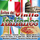 Éxitos del Vinilo-Italianos von Various Artists