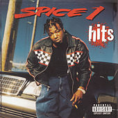 Hits by Spice 1