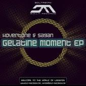 Gelatine Moment von Various Artists