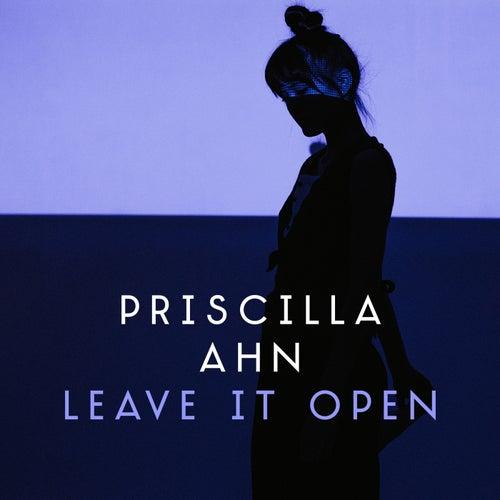 Leave It Open by Priscilla Ahn