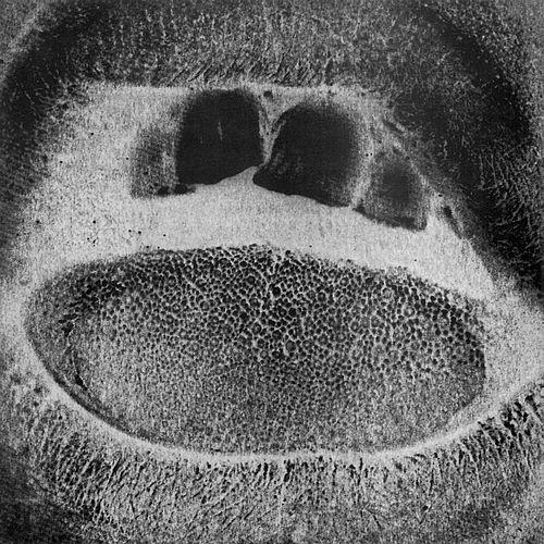 Kino Il: Form Destroyer by Skullflower