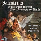 Palestrina: Missa Papae Marcelli; Missa Assumpta est Maria by Pro Cantione Antiqua