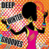 Deep Winter Grooves de Various Artists