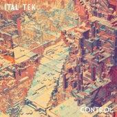 Control by iTAL tEK
