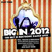 Big in 2012 (The Best in Electronic Dance Music) by Various Artists
