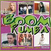 El Boom De La Rumba by Various Artists