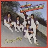 Pero No by Los Temerarios