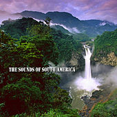 Sound Of South America von Various Artists