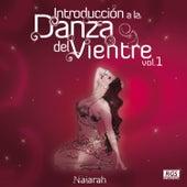 Introducción a la Danza del Vientre Vol. 1 by Various Artists