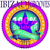 Ibiza DJ Grooves 2013 (100% Hot Summer House and Electro Clubbers) by Various Artists