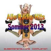 Alle Radio-Hits Sommer 2013 (Zusammenstellung - Compilation) von Various Artists
