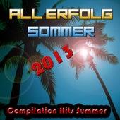 All Erfolg Sommer 2013 (Compilation Hits Summer) von Various Artists