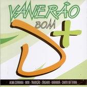 Vanerão Bom D+ - Vol. 2 by Various Artists