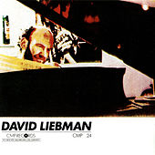 The Loneliness Of a Long Distance Runner di David Liebman