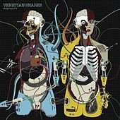 Hospitality by Venetian Snares