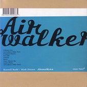 Airwalkers by Roswell Rudd
