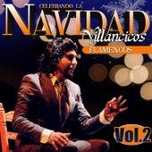 Celebrando la Navidad Vol. 2. Villancicos Flamencos by Various Artists