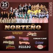 Íconos 25 Éxitos Norteño de Various Artists